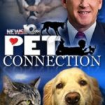 Steve Caporizzo's Pet Connection
