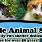 Estherville Animal Shelter