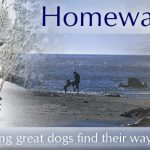 Homeward Bound Dog Rescue of New York, LLC.
