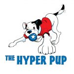 The Hyper Pup: Saratoga Dog Lovers Business Spotlight